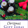 Christmas Gift Ideas For Essential Oils Lovers Natural