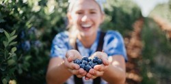 bilberry benefits for skin
