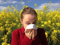 woman blowing her nose after sneezing due to allergies caused by the pollen given off by the plants behind her