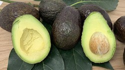 avocado oil is very healthy for the skin