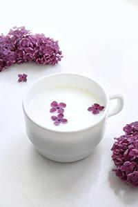 lilac tincture benefits