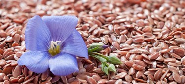 how to eat flax seeds to reduce tummy