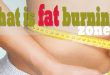 What is fat burning zone?