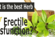 What Is the Best Herb for Erectile Dysfunction?