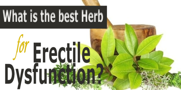 What-is-the-best-herb-for-erectile-dysfunction