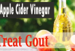 Use Apple Cider Vinegar to Treat Gout