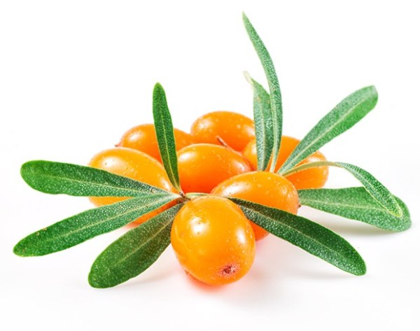 Suppositories With Sea-buckthorn Oil 10 pieces