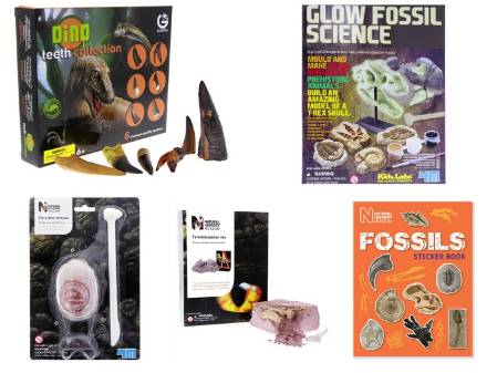 Encourage your little dino hunter to explore their fossil finding skills with an excavation kit, a fossil sticker book, or a dino fossil replica