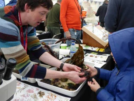 Anthony inspiring a potential new recruit for the Big Seaweed Search!