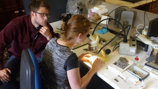 Mike and Chloe back in the lab working on their lichen identification
