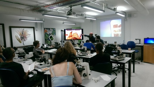 A workshop held in the Angela Marmont Centre for UK Biodiversity on the identification of freshwater invertebrates