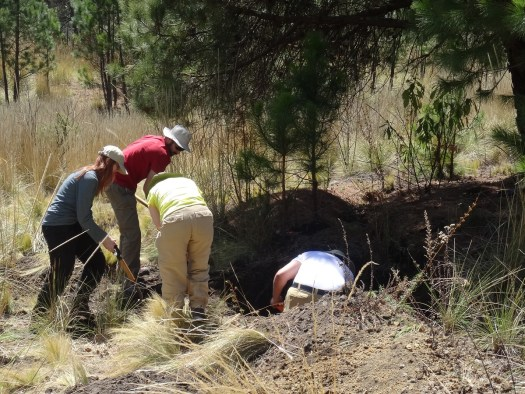 Photo showing the whole team taking part in the digging, with the hole now a few feet deeper and wider