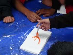 Photo showing the model close up with a student injecting red/orange dye onto the top of the volcano from a syringe