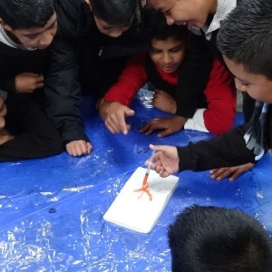 Photo showing the student injecting the dye onto the volcano, surrounded by his fellow students eagerly looking at the process