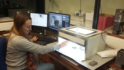 Imaging a small specimen from our Plesiosaur collection