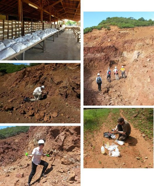 Geological fieldwork montage