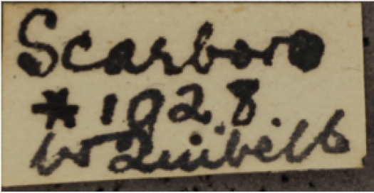 Photo of close up of a label with handwritten text in black ink.