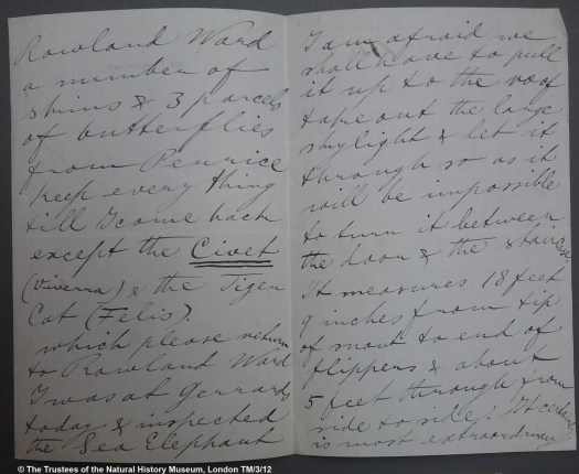 Photograph of a paper unfolded in its middle with several lines of cursive handwriting on each side of the fold.