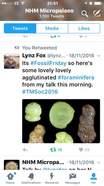 Micropalaeontology Tweet