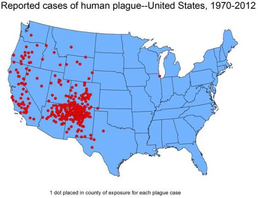 Graphic showing the USA (not including Alaska) with red dots indicating the reported cases of human plague between 1970 and 2012. The majority of the red dots are in the west of the USA.