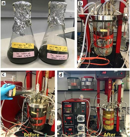 bioleaching-blog-image-1