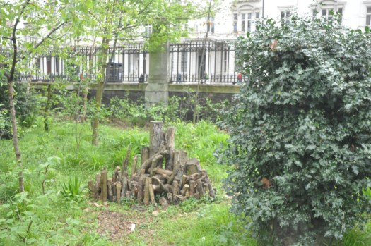 Photo of a grassy area of the garden with a a holly bush dominating the right side of the image, and the log pile it's centre.