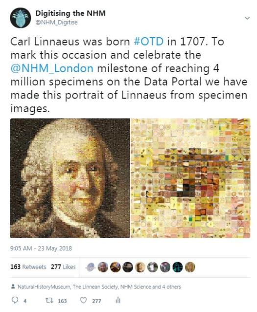 data images
