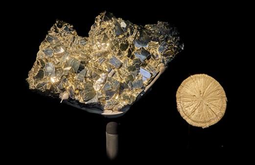 Pyrite Earth Gallery Porthole specimen 2019