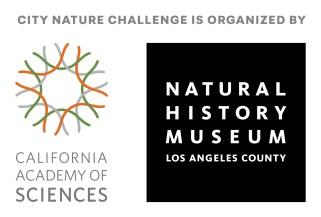 City Nature Challenge organiser logos