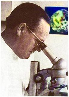 Bernhard Werner (1910-1984)