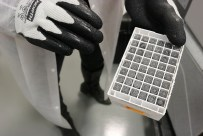Specimens stored at -80˚C keeps the specimens fit for purpose for further research