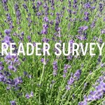 Reader Survey: I Want Your Input!