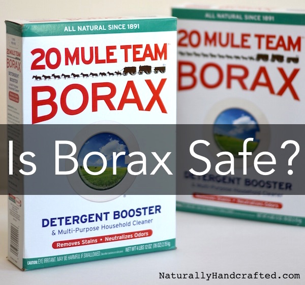 Is Borax Safe?