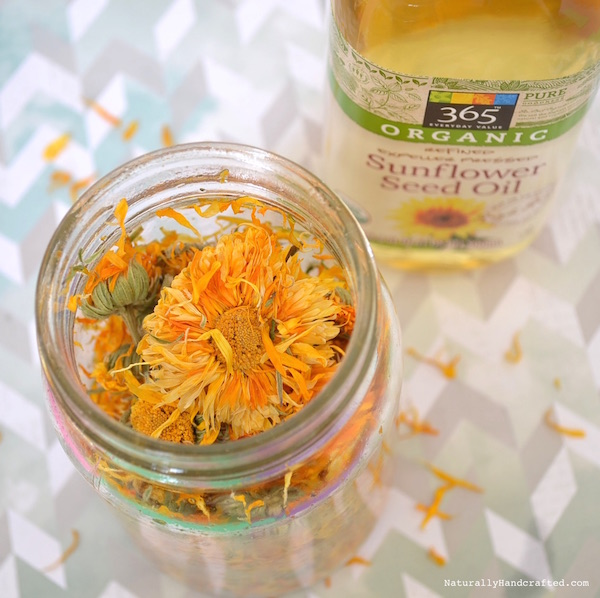 ingredients for homemade calendula oil