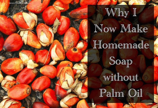 homemade soap without palm oil