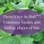 Other names for soy, common hiding places-naturallyliz.com