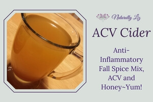 ACV Cider (Anti-Inflammatory Fall Spice Blend with ACV and Honey)
