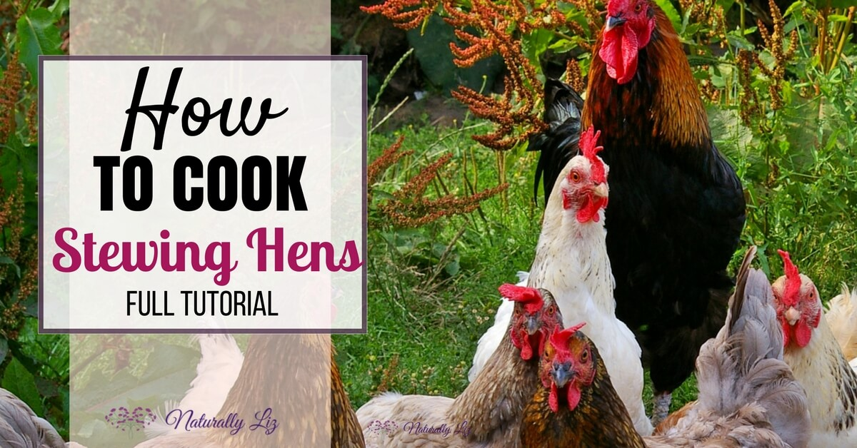 Full tutorial on how to cook a stewing hen by Naturallyliz.com