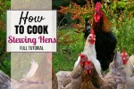 How to cook a stewing hen (full tutorial)