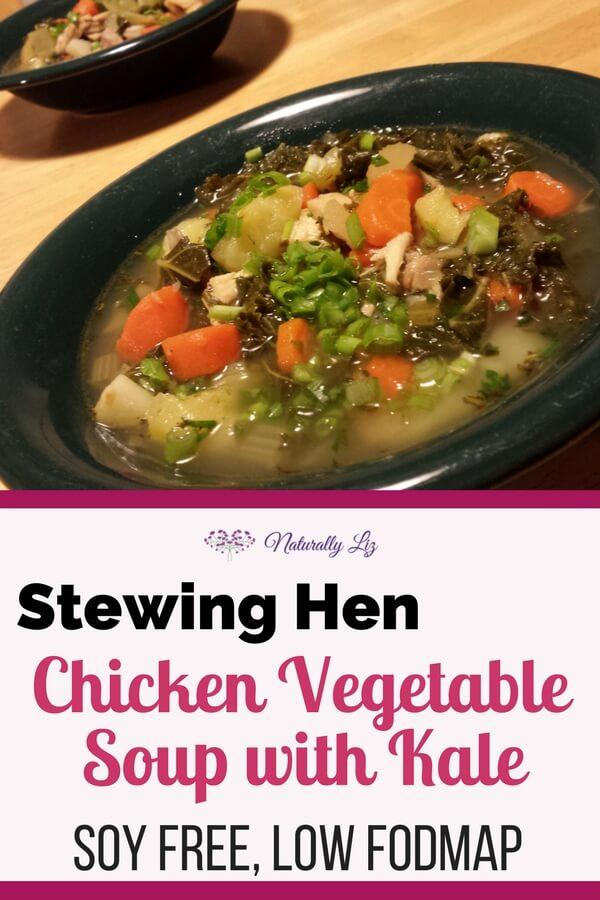 Stewing Hen Chicken Vegetable Soup with Kale-Mmmmm Mmmmm Good