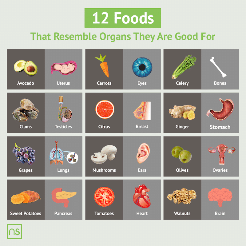 12 Foods That Resemble The Organs They Are Good For