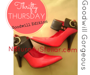 Goodwill, Thrift, Naturally Stellar, Thrifty Thursday, Goodwill Gorgeous, Runway, Sexy, Fashionista, Fashion, Budget