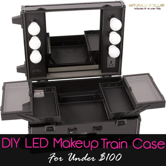 DIY LED Makeup Train Case | Naturally Stellar