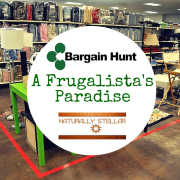 Bargain Hunt Stores  A Frugal Chicks Paradise
