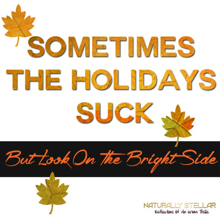 Sometimes The Holidays Suck | Naturally Stellar
