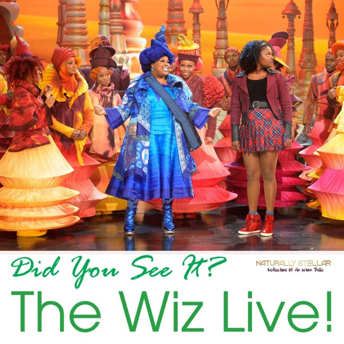 The Wiz Live -- Photo by: Virginia Sherwood/NBC | Naturally Stellar
