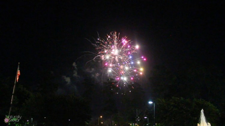Coosa River Fireworks 2016 - Gadsden, AL | Naturally Stellar
