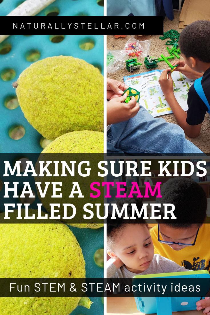 STEAM and STEM activity ideas   Naturally Stellar