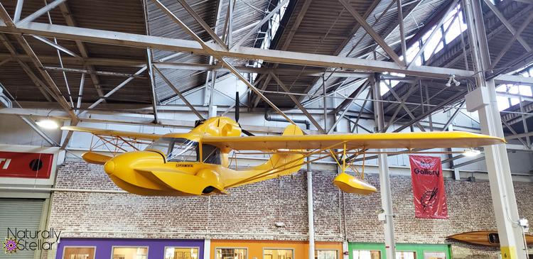 Yellow Avid Catalina Aircraft | Naturally Stellar