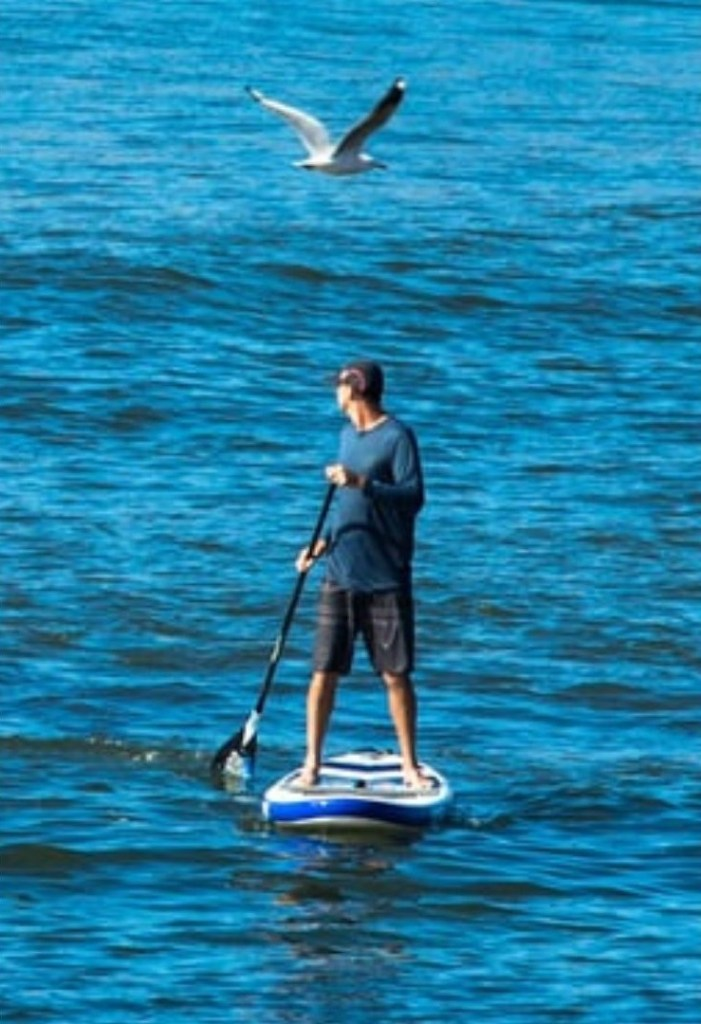 Man on a paddle board in the middle of a lake.